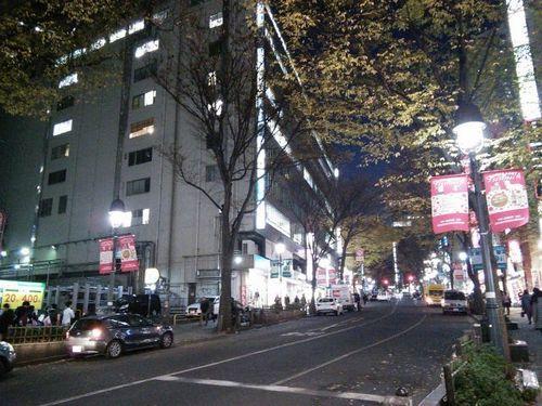 shitami (2).jpg